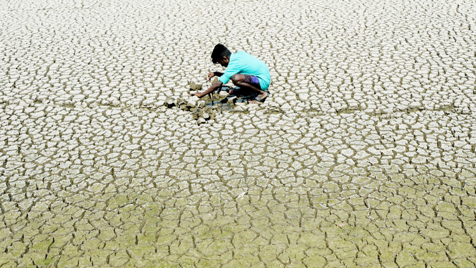 An Indian youth scouts around for mud crabs on a dried lake bed in Chennai, India