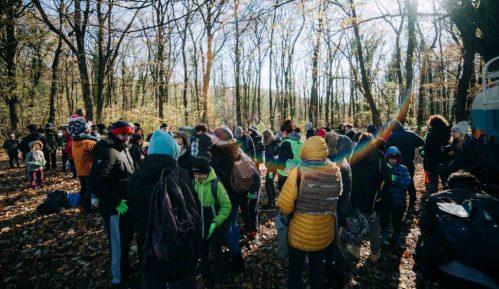 Egzit i ekološke organizacije uputile apel za masovno pošumljavanje Srbije 15
