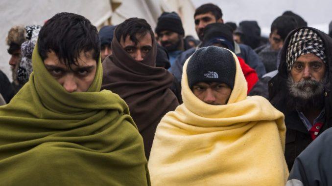 Noć u šumi – kako su migranti oterani u Bugarsku 5