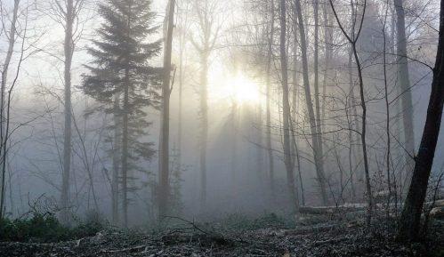 Svetlosna terapija protiv zimske depresije 2