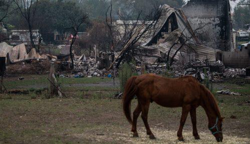Australija: Kiša pada, požari gore, turizam propada 4