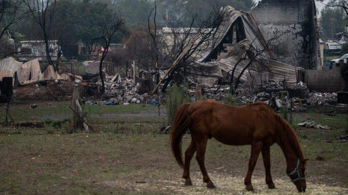 Australija: Kiša pada, požari gore, turizam propada 3