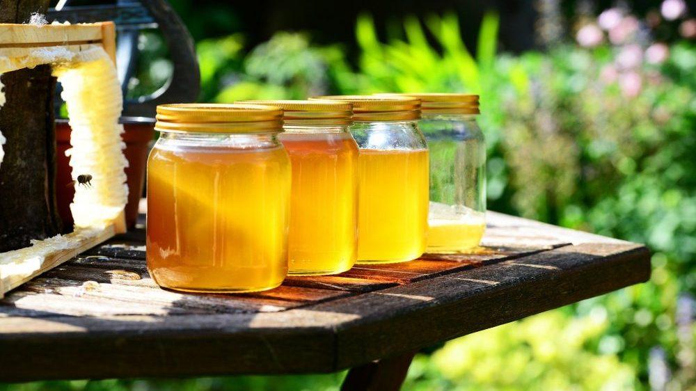 Koliki je značaj meda u ishrani? 1