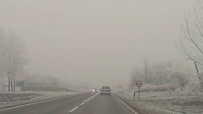 JP Putevi Srbije: Magla na putevima širom Srbije 1