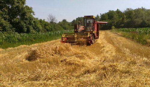 Agrosmart: Policija uhapsila poljoprivrednika u Silbašu dok se vraćao s njive 11