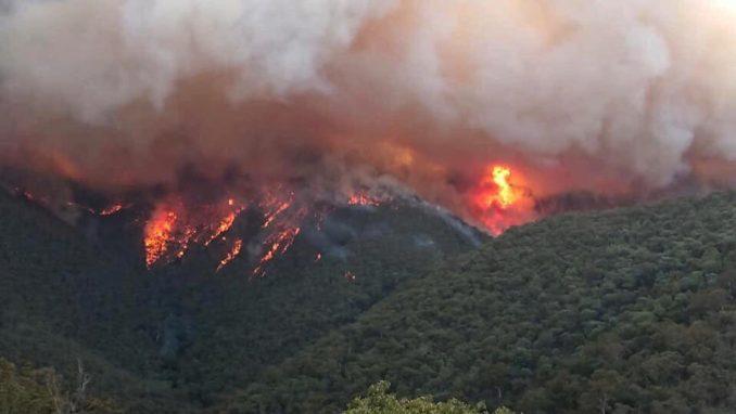 Evakuacija u Australiji pre dolaska novog toplotnog talasa, vanredno stanje u Novom Južnom Velsu 1