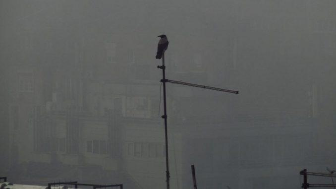 Najzagađeniji januar u Beogradu u poslednjih šest godina 2