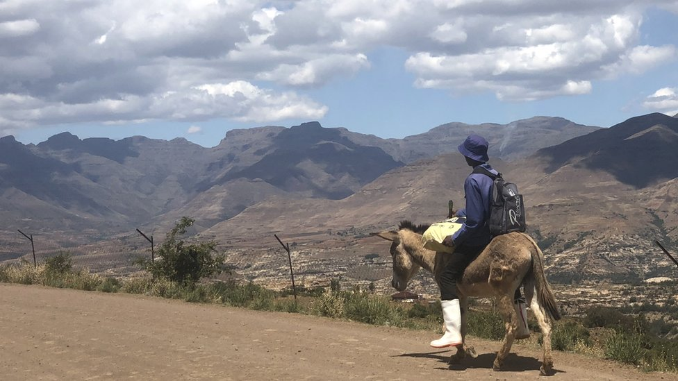 Man on a pony looking at the landscape