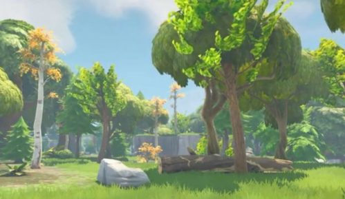 Kako milijarder koji stoji iza popularne video igre štiti šume? 6