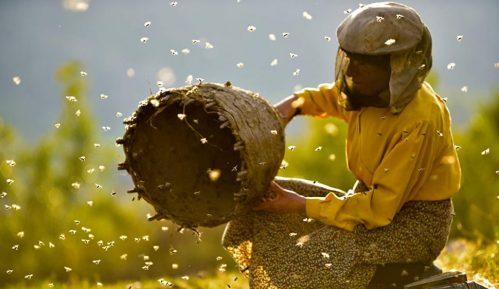 Muratova: Ako uzmemo jednog Oskara biće pola-pola, kao i sa medom i pčelama 1