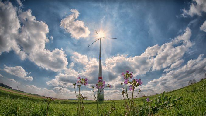 Švedska lider u EU u korišćenju energije iz obnovljivih izvora 1