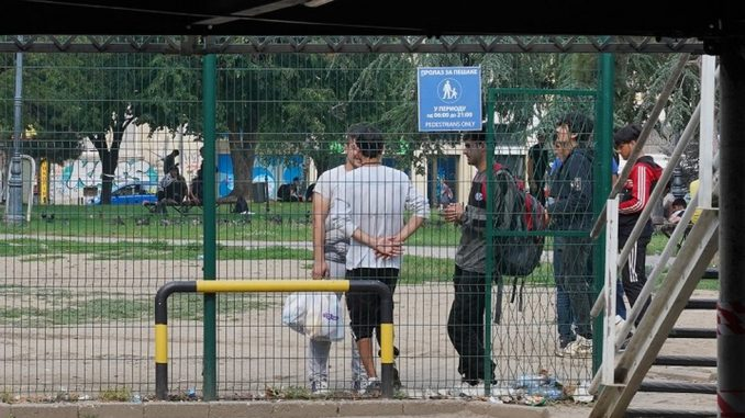 Narodne patrole: Ko patrolira Beogradom u potrazi za migrantima 2