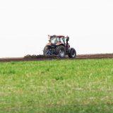 Uprkos lošem kvalitetu proizvođači traže visoku cenu pšenice 8