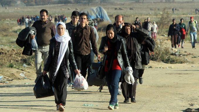Organizacije civilnog društva traže ocenu ustavnosti naredbe o ograničenju kretanja migranata 3