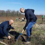 U Lipovačkoj šumi počela akcija pošumljavanja 9