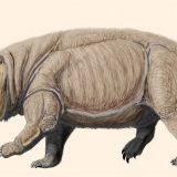 Drevni rođak sisara 2