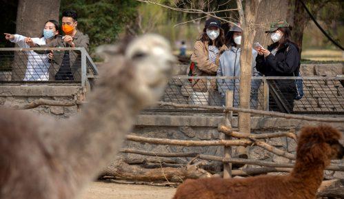 U Kini nijedan slučaj zaraze novim korona virusom, delimično ukinute mere karantina u Hubeju 8