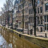 Holandija: Izbori u doba korone 12