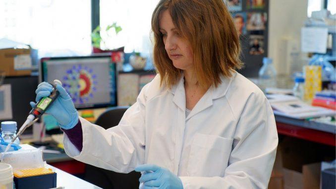 Korona virus: Da li smo bliže vakcini ili leku 4
