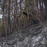 Ugašen požar kod Užica i Arilja 10