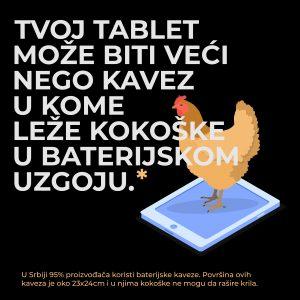 Zašto su kokoške na livadi omiljena ilustracija industrije jaja? 2