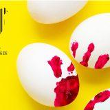 Da li znate istinu o jajima? 2