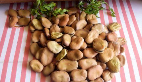 Bob - fava pasulj kao humus (recept) 1