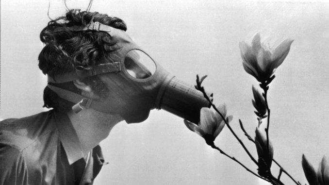 Pedeset godina Dana planete Zemlje uz mere suzbijanja pandemije i slabije zagađenje 3