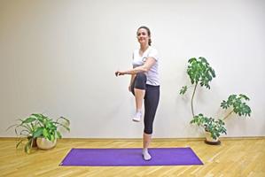 Kako da vežbate u kućnim uslovima - predlog za 12 vežbi 2