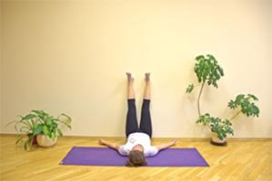 Kako da vežbate u kućnim uslovima - predlog za 12 vežbi 12