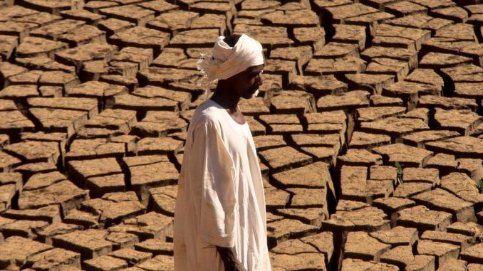 Klimatske promene: Više od tri milijarde ljudi će do 2070. živeti u ekstremno toplim mestima 2