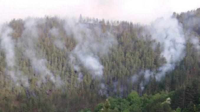 Veliki požar na Kopaoniku, gori i šuma oko manastira Studenica, evakuisano šest domaćinstava 4