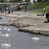 Očišćeno priobalje Dunava i kej sa prilazom ka plaži Lido 4