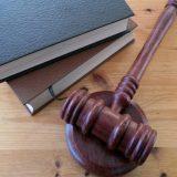 Sudija Stepanović: Sudovi jasno da pokažu da nisu servis izvršne vlasti 11