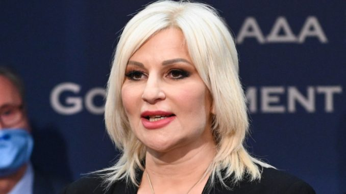 Mihajlović: Srbija se neće sklanjati ni od jedne gasne rute 5