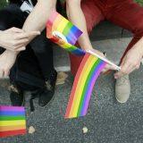 Sa kojim problemima se suočava LGBT+ populacija u Srbiji? (ANKETA) 1