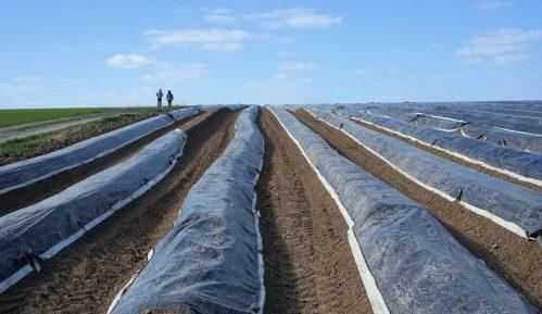 Grad Beograd raspisao konkurs za podsticaje u poljoprivredi 6