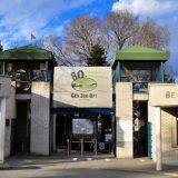 Radojičić: Danas besplatan ulaz u Zoo vrt za decu do 15 godina 12