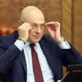 Ministar Vukosavljević o izjavama Aje Jung: Crno srce gnevne krtolice 12