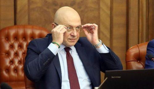 Ministar Vukosavljević o izjavama Aje Jung: Crno srce gnevne krtolice 10