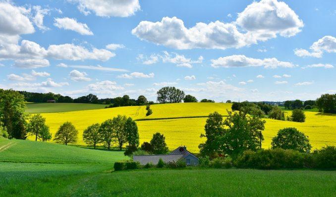 Kako klimatske promene utiču na poljoprivredu u Srbiji? 5