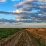 Zrenjaninski poljočuvari otkrili 500 hektara uzurpiranog poljoprivrednog zemljišta 15