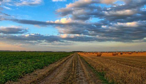 Zrenjaninski poljočuvari otkrili 500 hektara uzurpiranog poljoprivrednog zemljišta 8