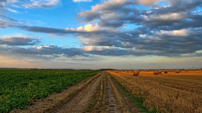 Pokret za preokret: Vlast kriva za eutanaziju srpske poljoprivrede 4