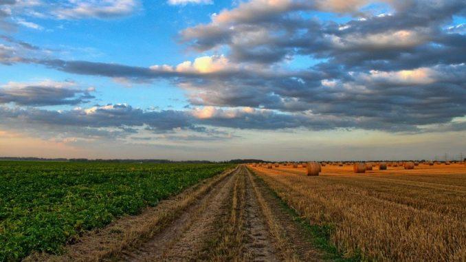 Pokret za preokret: Vlast kriva za eutanaziju srpske poljoprivrede 1