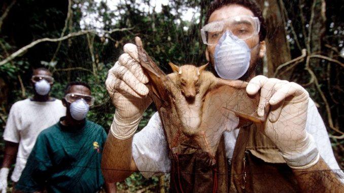Korona virus: Zašto Kovid-19 nije poslednja pandemija 3