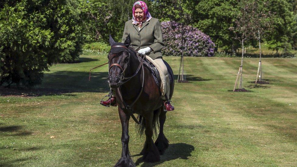 Kraljica jaše ponija u zamku Vindzor