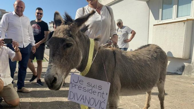 Crna Gora, Budva, opština i magarac: Od suzavca do nove vlasti i magarca na Trgu sunca 4