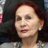 Vida Ognjenović: Cilj nam je smirivanje situacije u DS 8