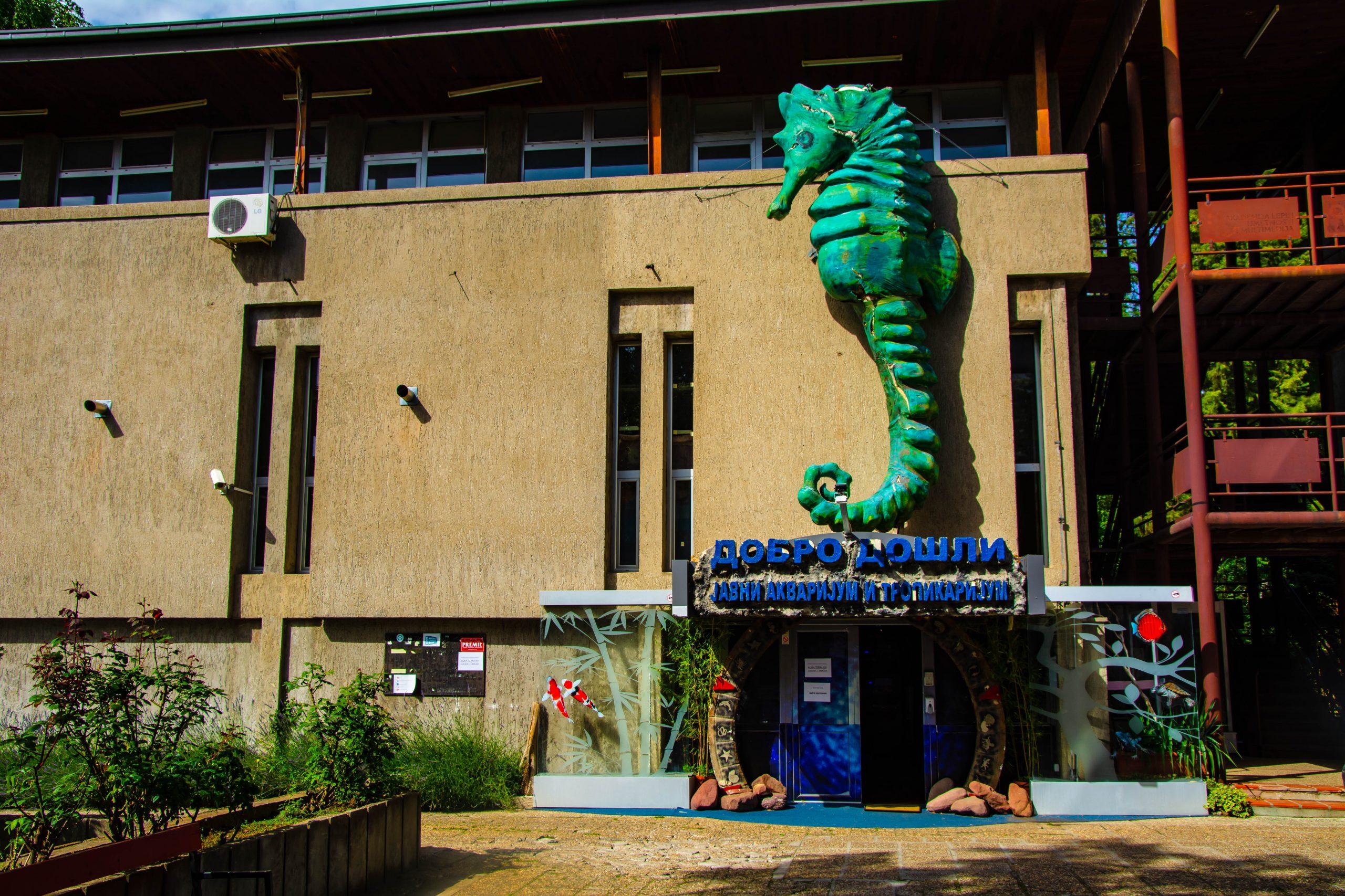 U Javnom akvarijumu: Mesto gde su životinje uvek na prvom mestu 3